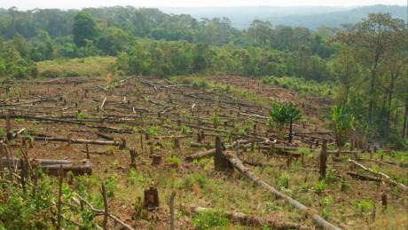 cambodia-deforestation-460x259